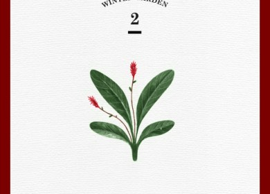 Red Velvet – Wish Tree (세가지 소원)