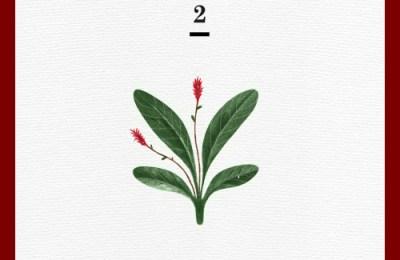 Red Velvet – Wish Tree (세가지 소원)