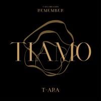 t-ara-remember