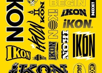 iKON – B-DAY (벌떼)
