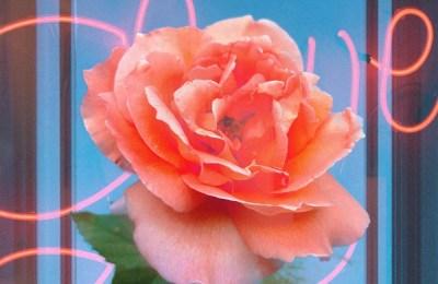 Elly (Weki Meki) – Rose's Smile (장미의 미소)
