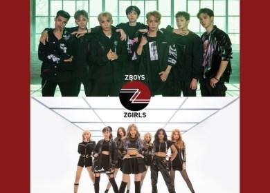 Z-STARS – Our Galaxy
