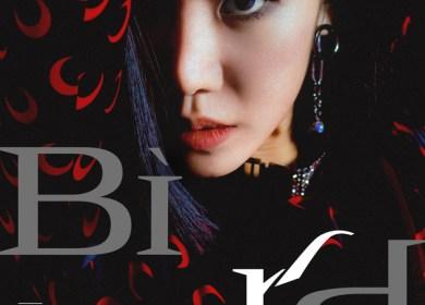 Kim Namjoo (김남주) – Bird