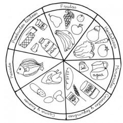 Blank Food Plate Diagram Wiring Trailer Brakes Alimentos Saludables Para Colorear | Imágenes