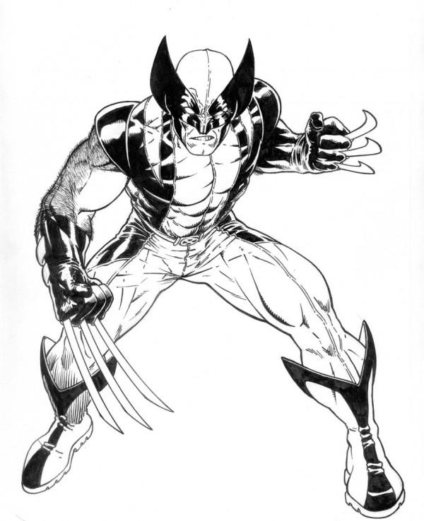 Imgenes de Wolverine para pintar  Colorear imgenes