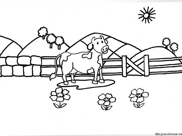 Dibujos Para Colorear De Vacas Bebes