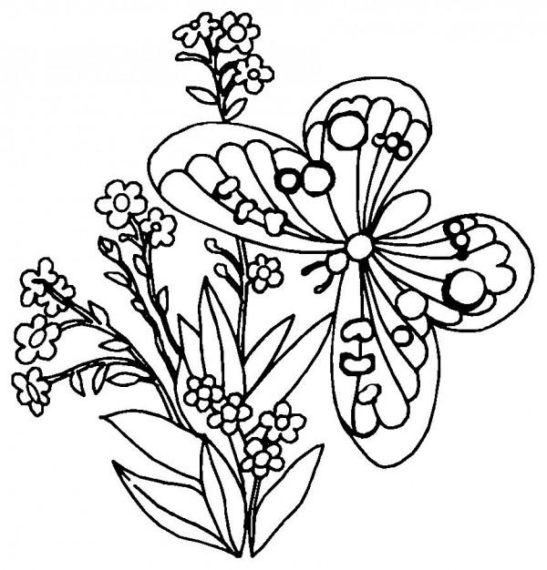 Dibujos para pintar de flores y mariposas de primavera