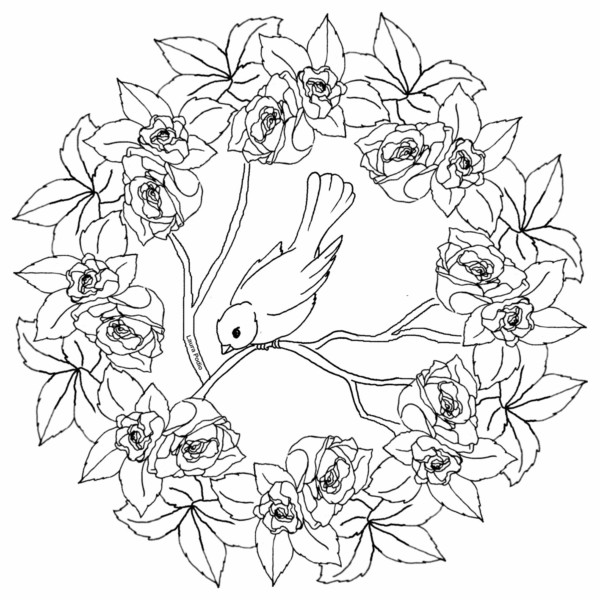 Pajaros Para Colorear Mandala Dibujos Para Colorear