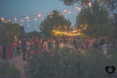 colores-de-boda-organizacion-boda-wedding-planner-decoracion-boda-136