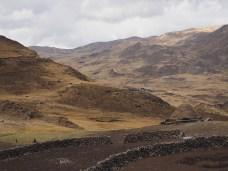 Vereinzeltes Leben in der Pampa