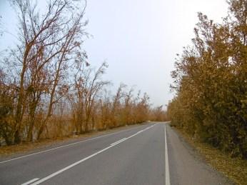 Herbstwelt