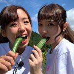 ゆいれいチャンネル【ベジモ農園】
