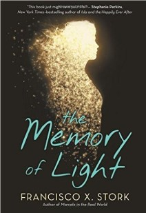 The Memory of Light by Francisco X. Stork.