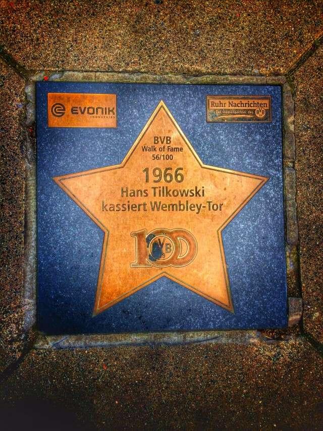 Stern auf dem Walk of Fame