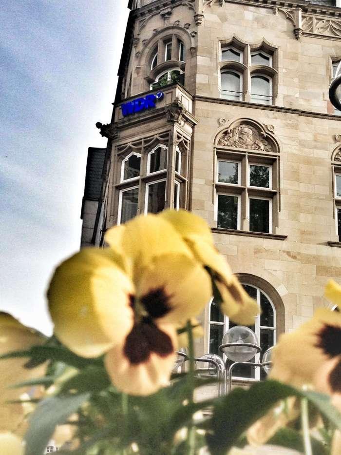 Funkhaus am Wallraffplatz - die WDR 2-Studios liegen unterhalb des WDR-Logos