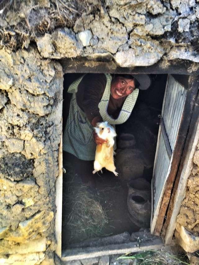 Eine Dorfbewohnerin zeigt stolz das Meerschweinchen, das sie in ihrer Hütte züchtet
