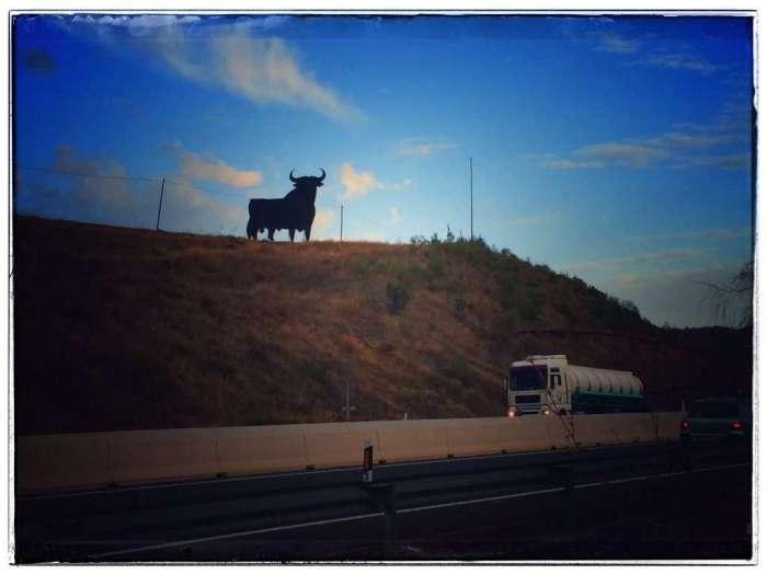 Spanischer Stier an Landstraße
