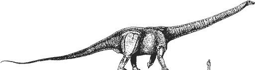 bruhathkayosaurus_b148