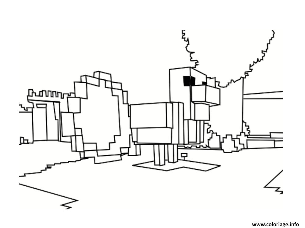 Coloriage Decors Minecraft dessin
