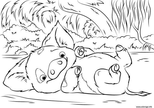 Coloriage Pua Pet Pig De Vaiana Moana Disney Dessin Vaiana Moana à