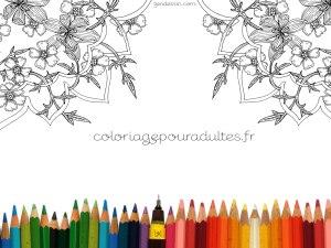 fond-ecran002-zendessin-coloriage-pour-adultes