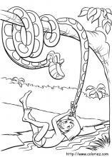 Dessin Livre De La Jungle : dessin, livre, jungle, Coloriages, Livre, Jungle