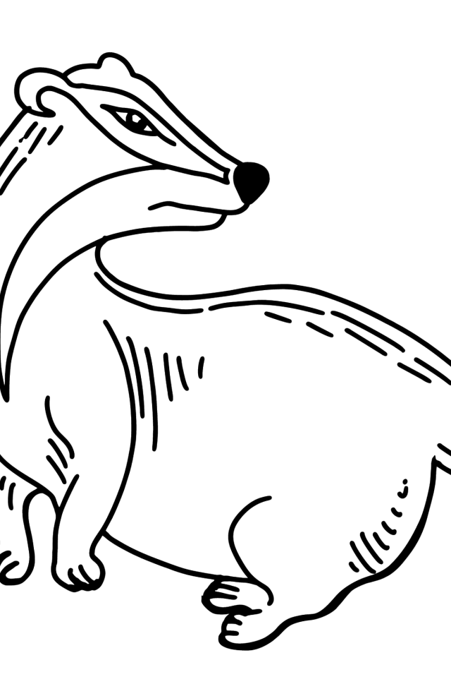 Badger coloring page ♥ Color Online for Free!