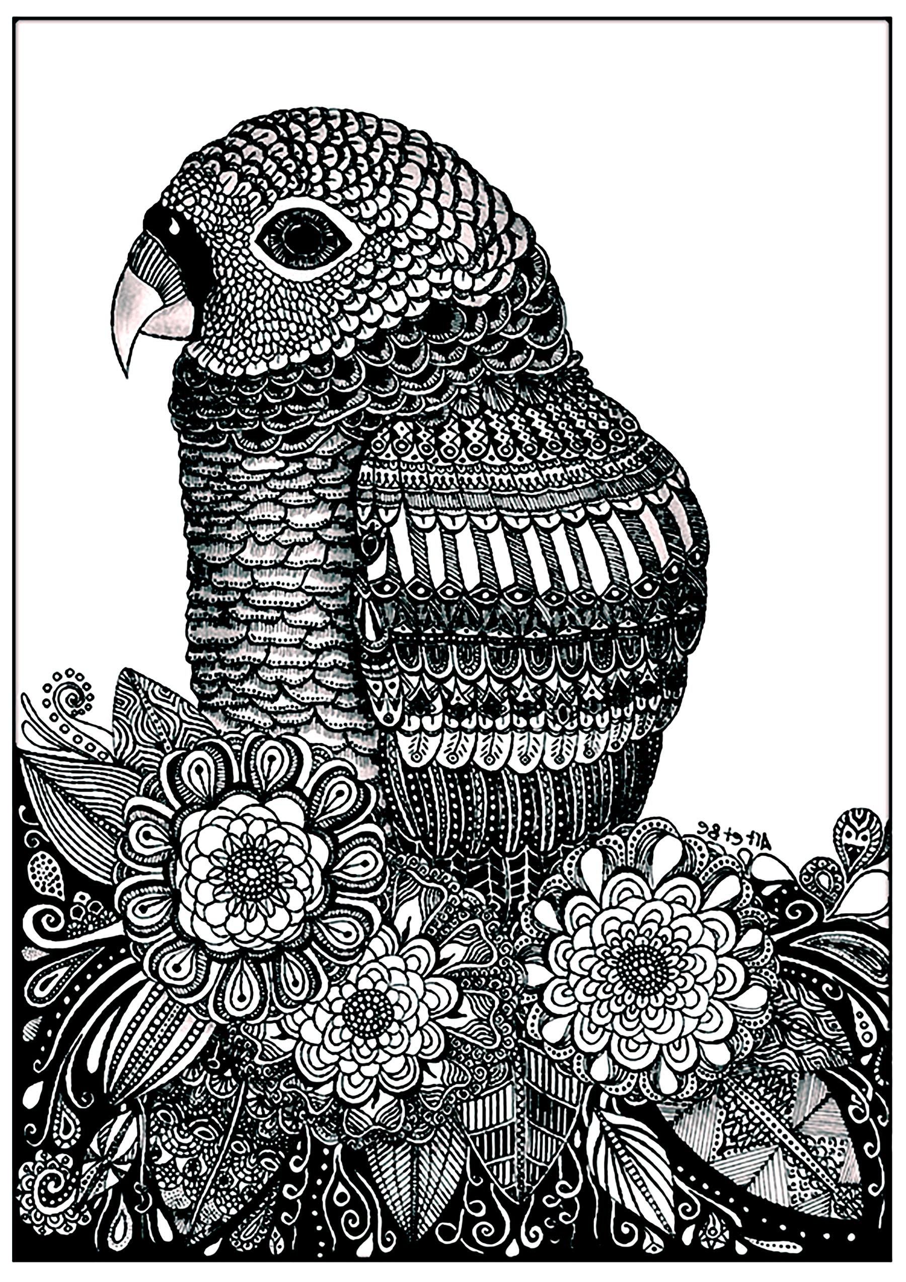 Free Collection Of Birds Coloring Pages