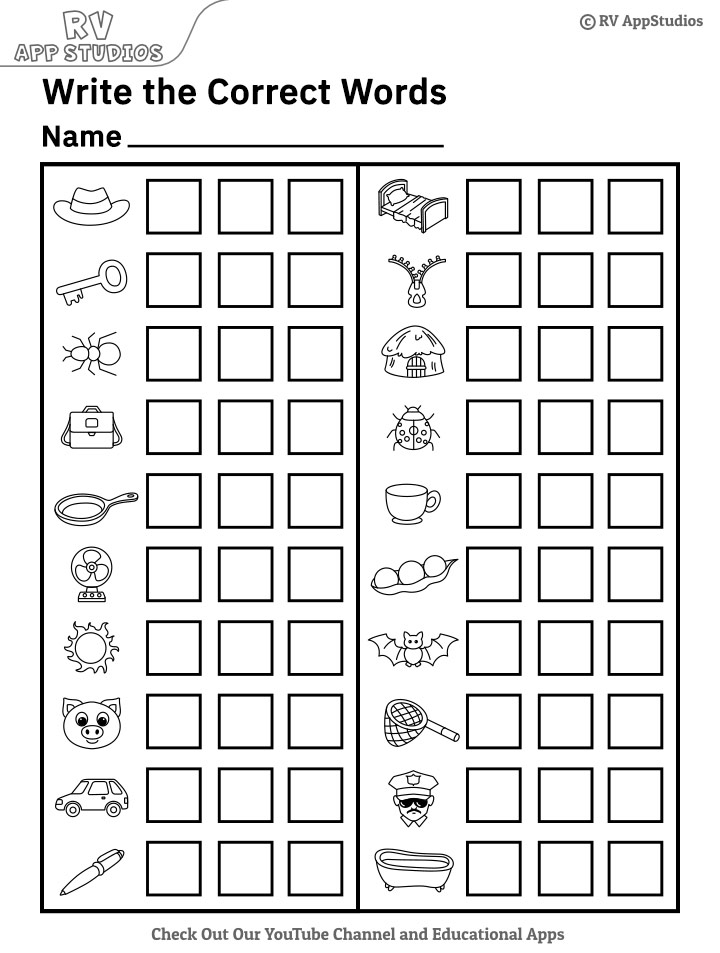 Look at the Picture and Write Correct Word Worksheets