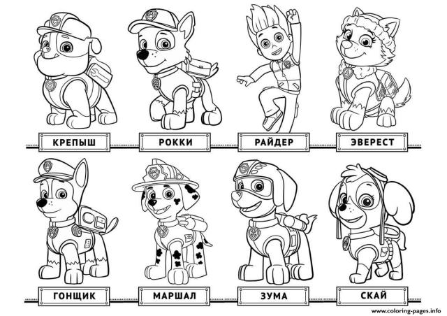 Paw patrol birthday coloring pages chase