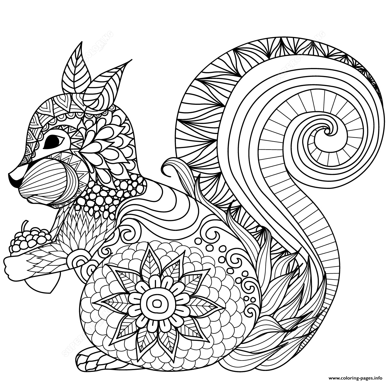 Squirrel Zentangle Adults_1 Coloring Pages Printable