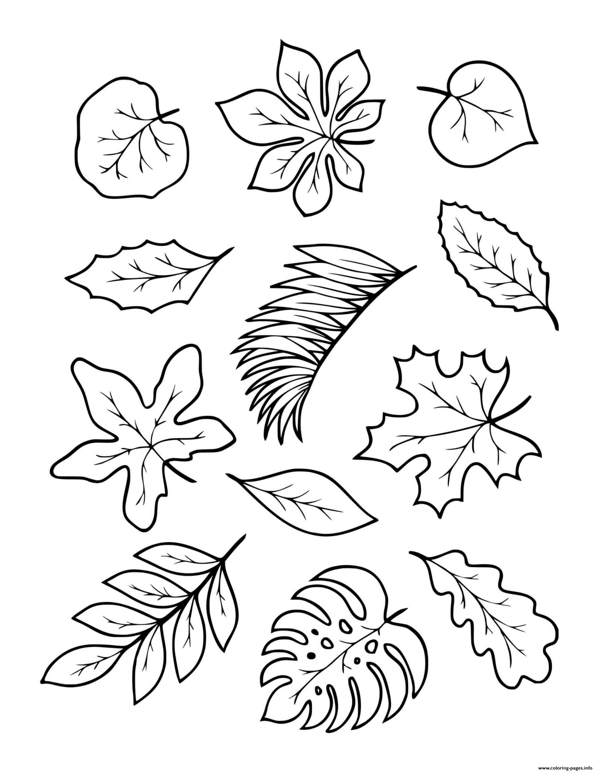 Fall Autumn Leaves To Color Coloring Pages Printable