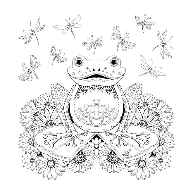 Frog Coloring Pages Coloring Rocks