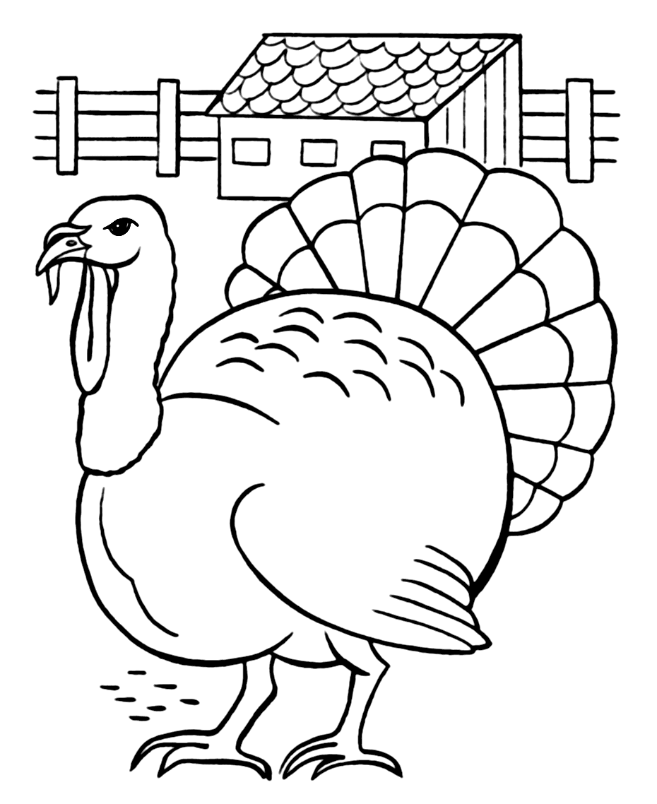 Turkey Coloring Pages Coloring Rocks