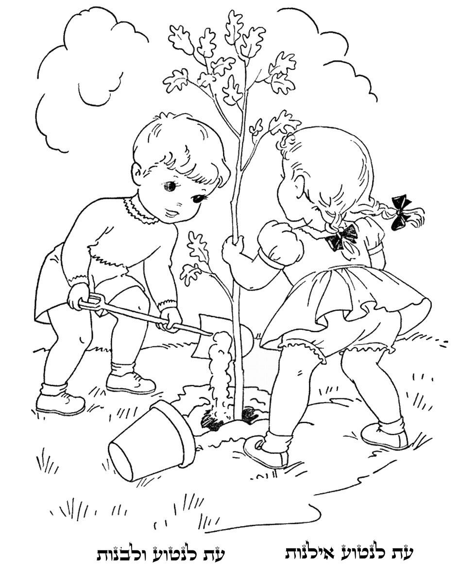 Tu B'shevat Coloring Pages : b'shevat, coloring, pages, Bishvat, Coloring, Pages