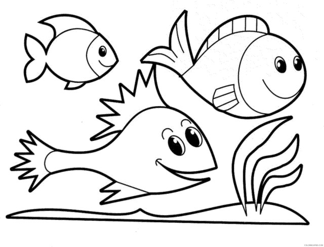 fish coloring pages for kindergarten Coloring30free - Coloring30Free.com