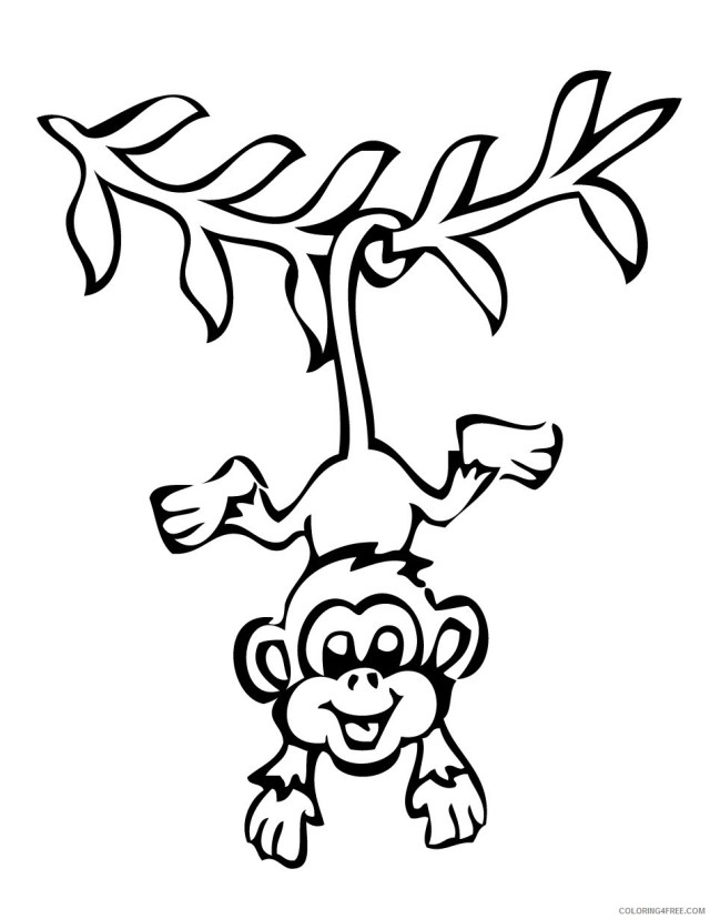 Black and White Monkey Coloring Pages monkeys free monkey pages