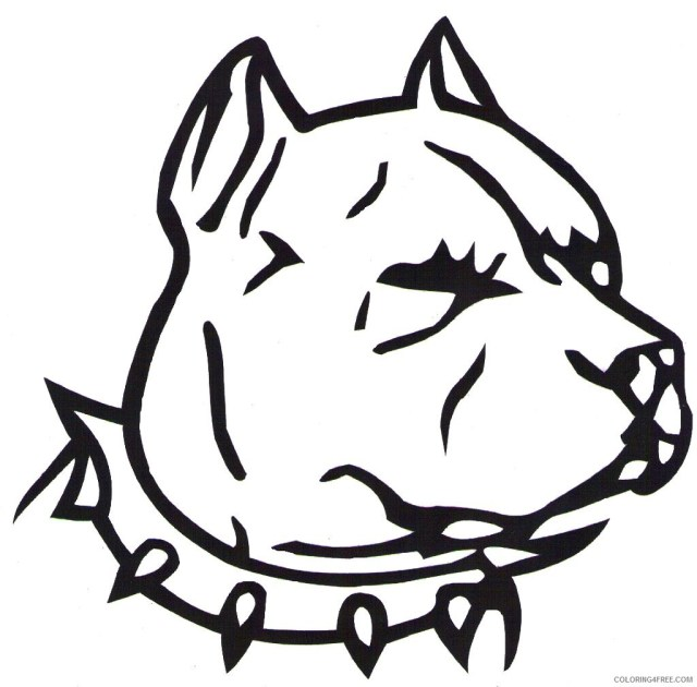 Pitbull Coloring Pages pit bull co Printable Coloring23free