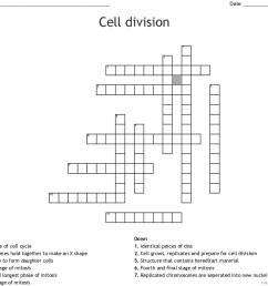 4th Grade Coloring Pages Educational Cell Division Science Worksheet 2020  0370 Coloring4free - Coloring4Free.com [ 983 x 1121 Pixel ]