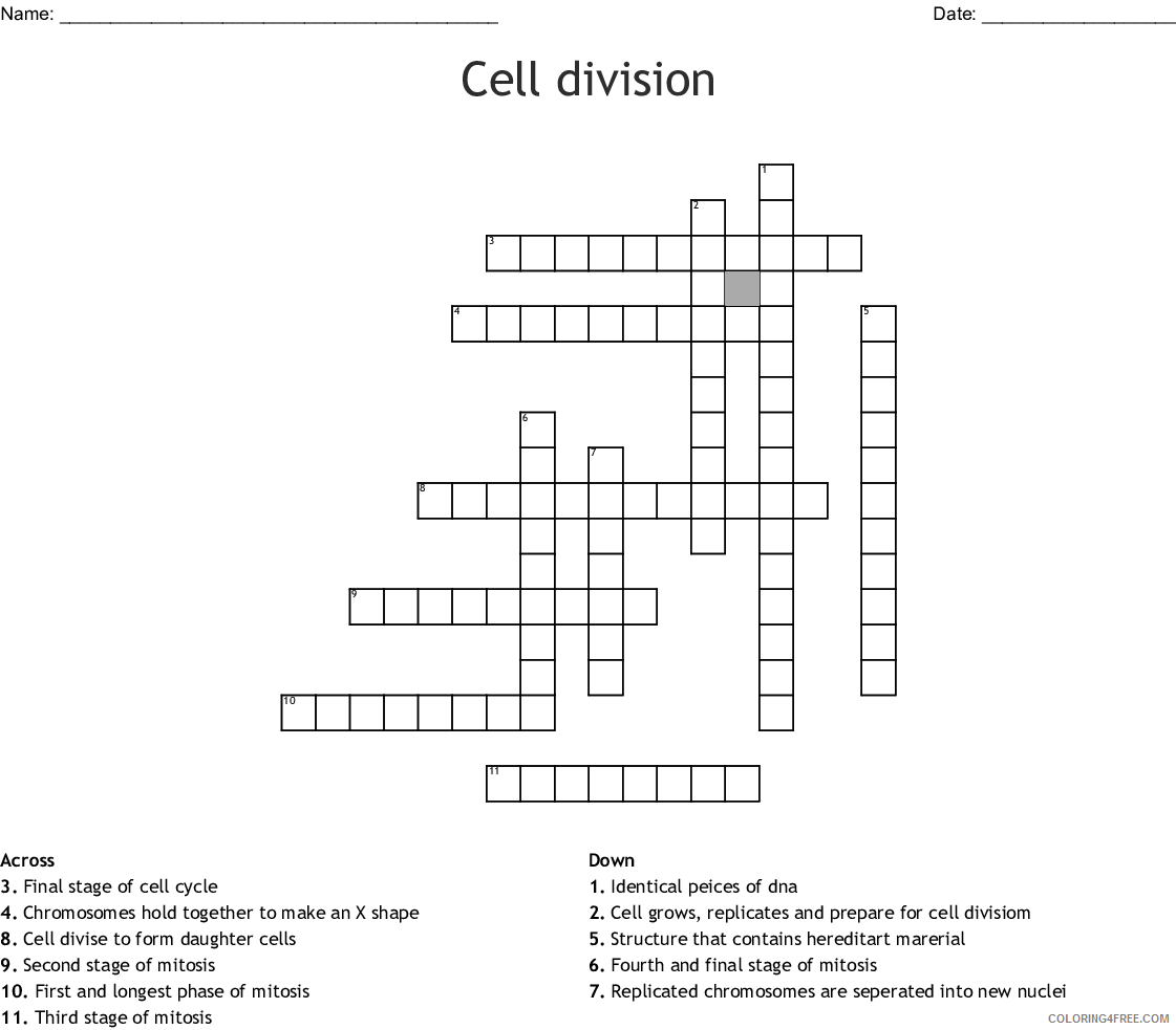 hight resolution of 4th Grade Coloring Pages Educational Cell Division Science Worksheet 2020  0370 Coloring4free - Coloring4Free.com