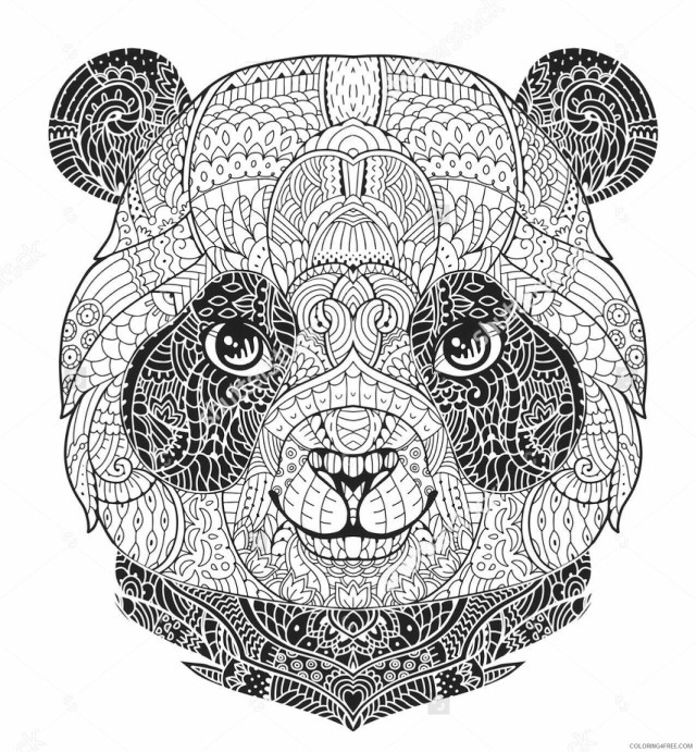 Adult Coloring Pages Panda Face for Adults Printable 13 13