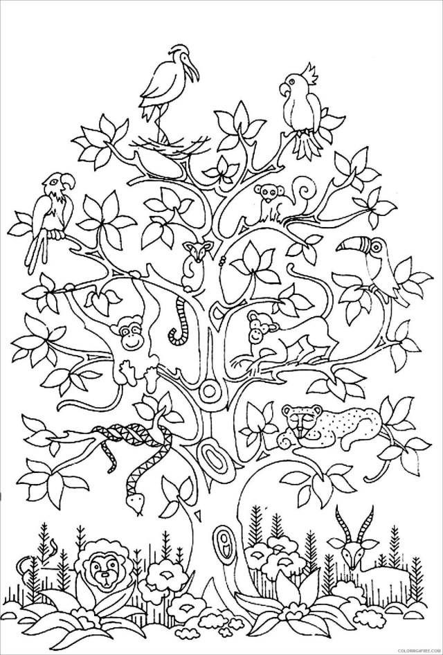 Printable Tree Coloring Pages Tree Nature printable animals lives