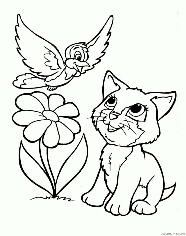 Kitten Coloring Sheets Animal Coloring Pages Printable 29 29