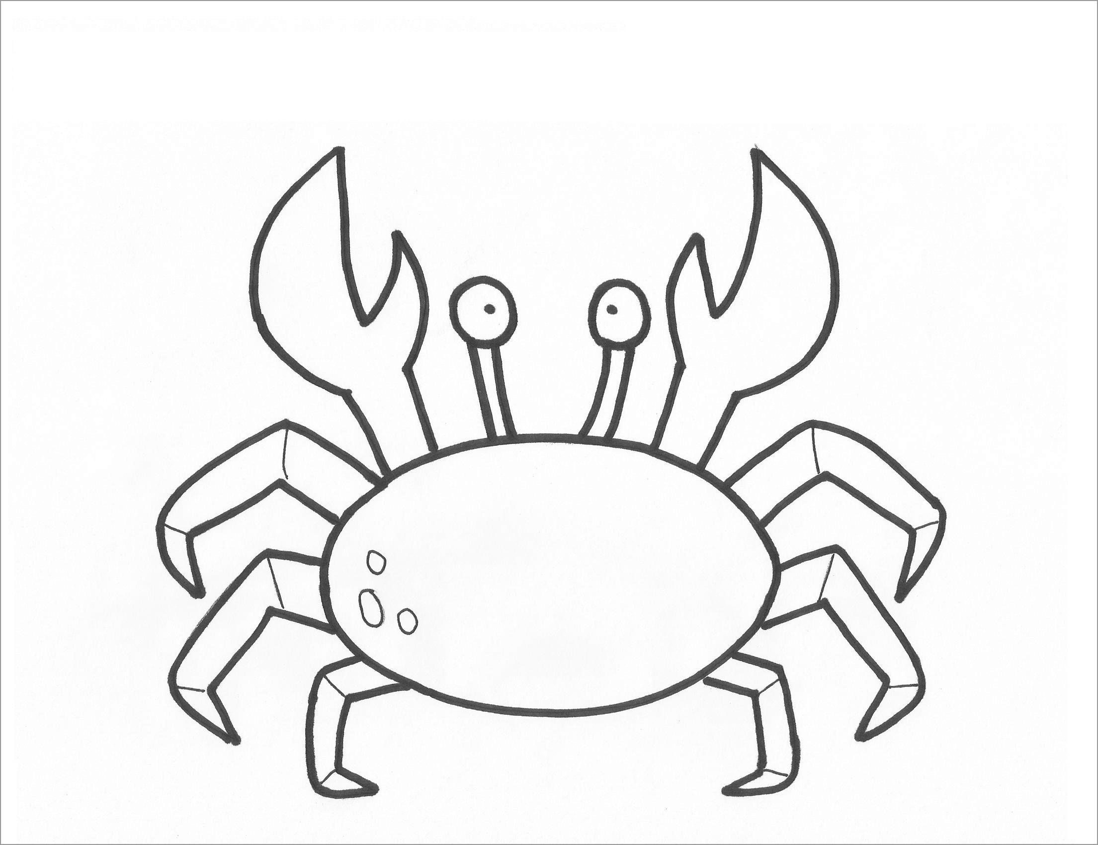 Baby Crab Coloring Page Coloringbay