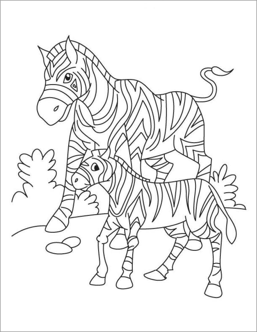 Zebra Coloring Sheet : zebra, coloring, sheet, Cartoon, Zebra, Coloring, ColoringBay