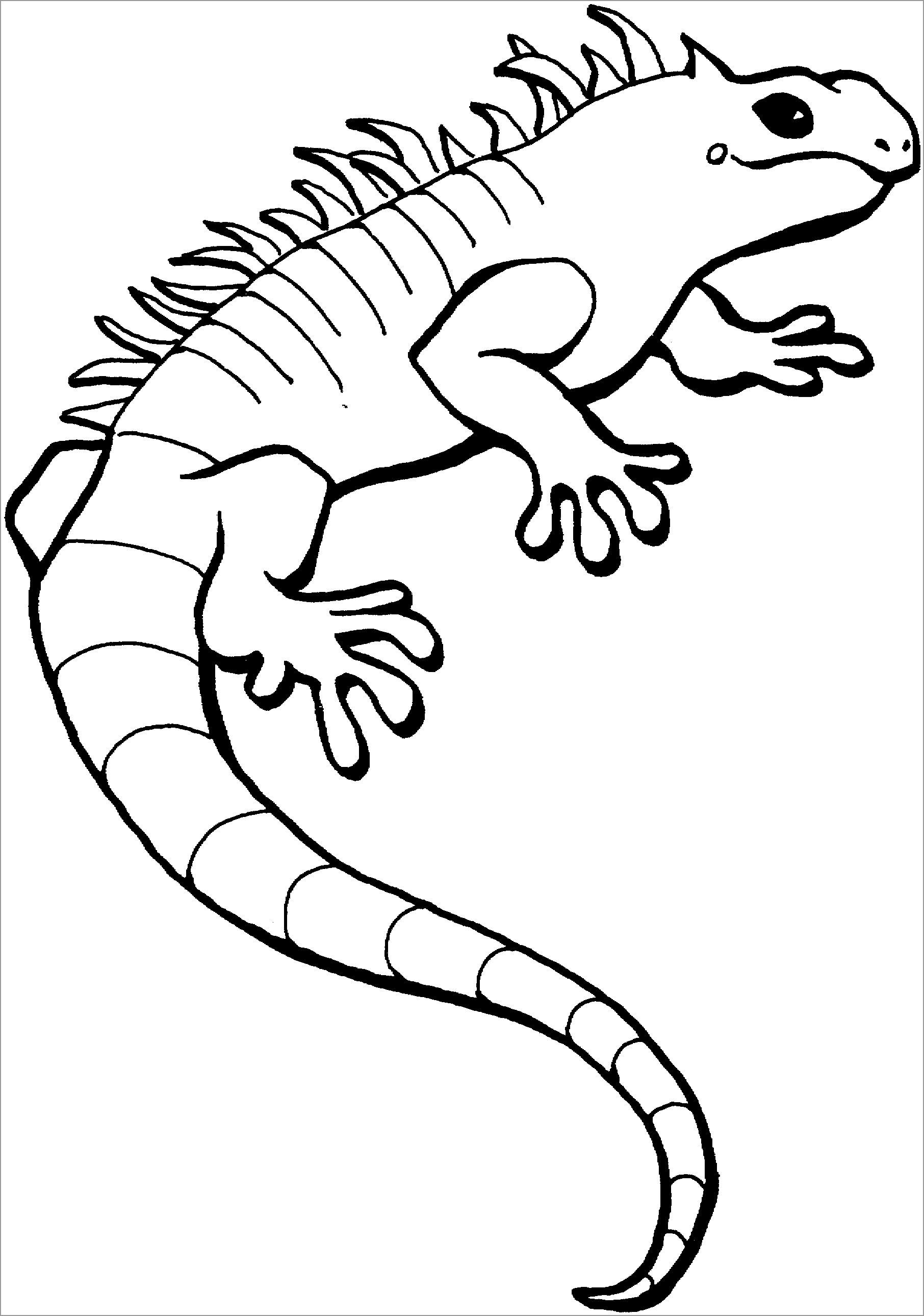 Lizard Coloring Sheet : lizard, coloring, sheet, Coloring, Lizards, ColoringBay