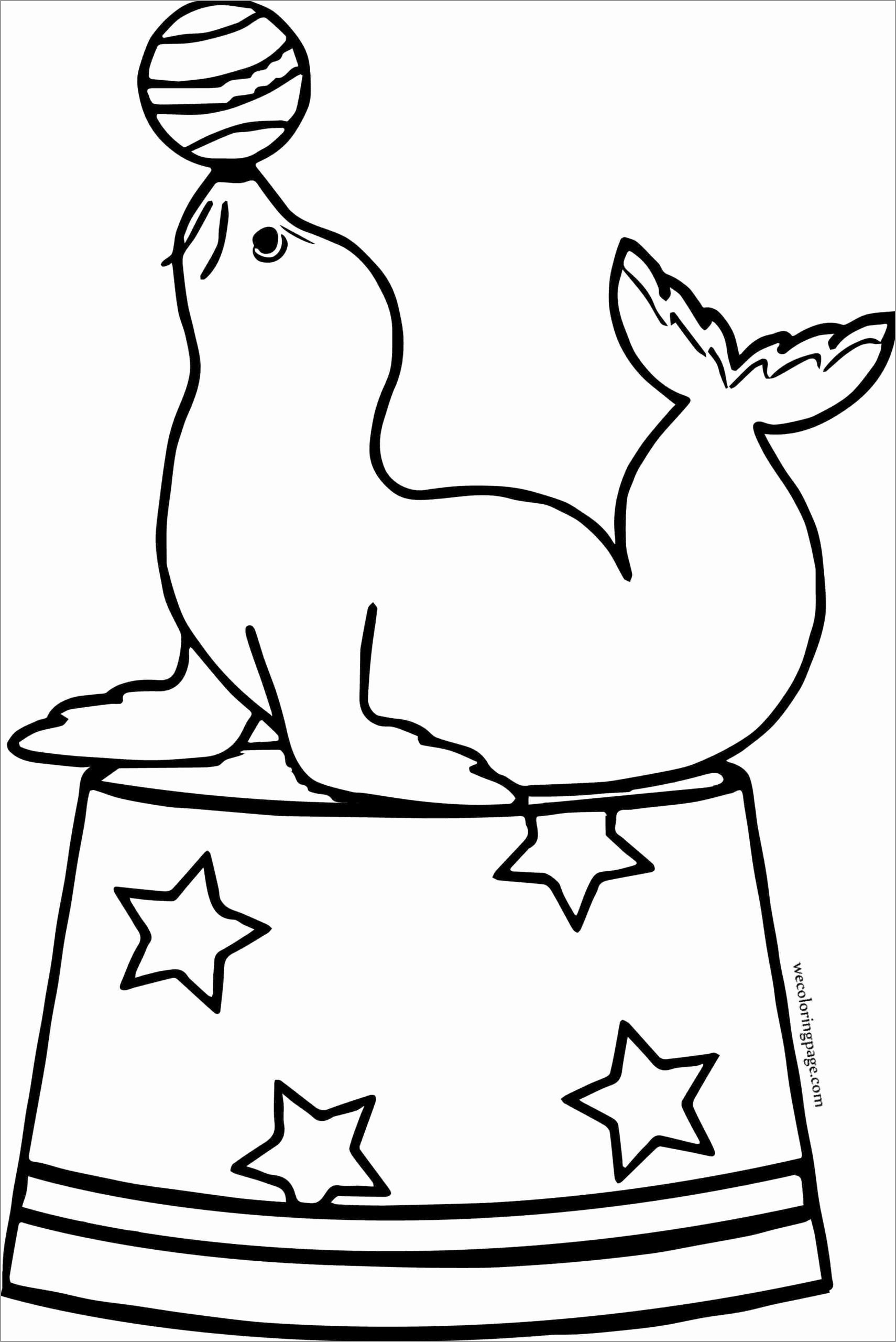 Seal Coloring Pages Coloringbay