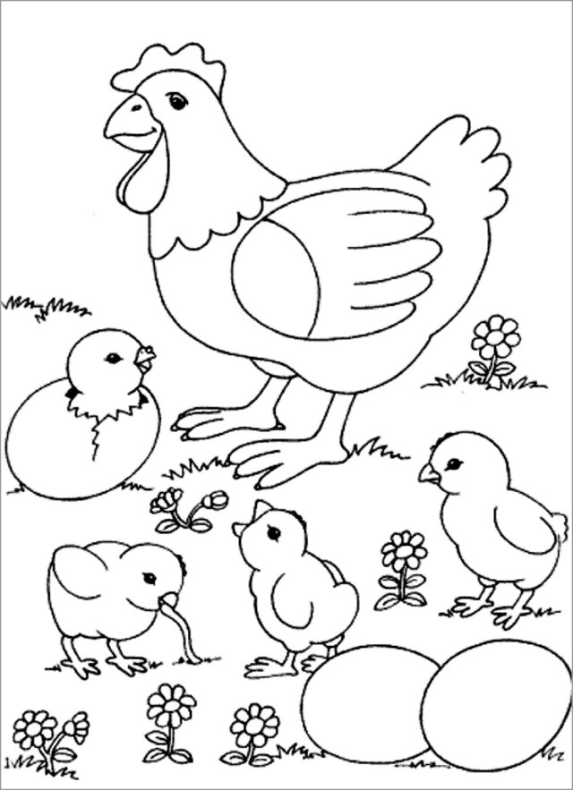 Simple Chicken Coloring Page - ColoringBay
