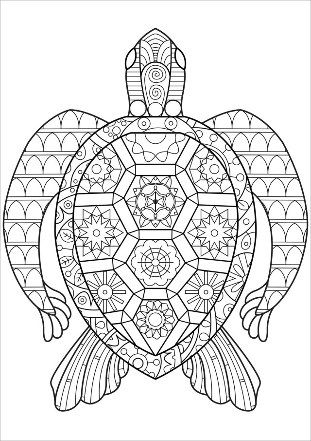 Turtle Coloring Page for Adult - ColoringBay