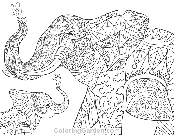 Elephant and Baby Adult Coloring Page